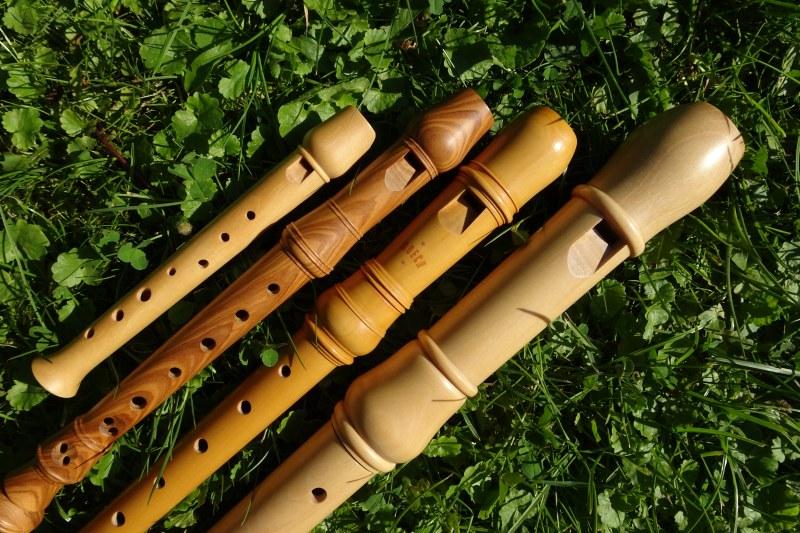 Erste Erfahrungen im gemeinsamen Musizieren in einem Musikschulensemble oder einer Band.