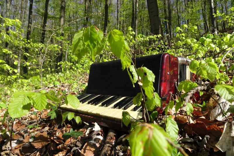 Musizieren und Psychologie: Das Verlernen beim Musikmachen akzeptieren.