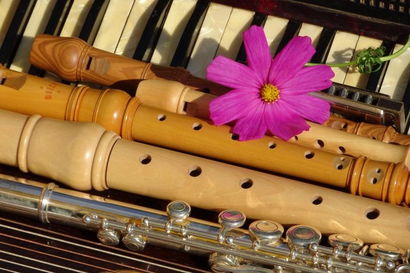 Welches Instrument lernen: Saiten-, Tasten-, Schlag- oder Blasinstrument?
