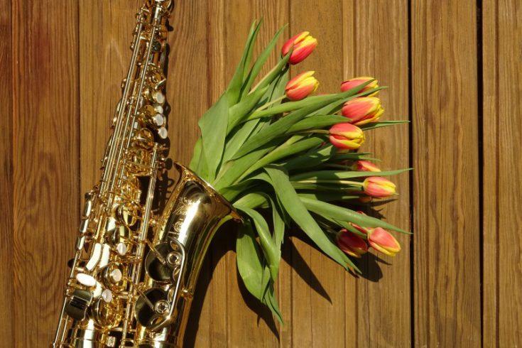 Goldfarbenes Saxophon mit Tulpen im Trichter glänzt in der Sonne