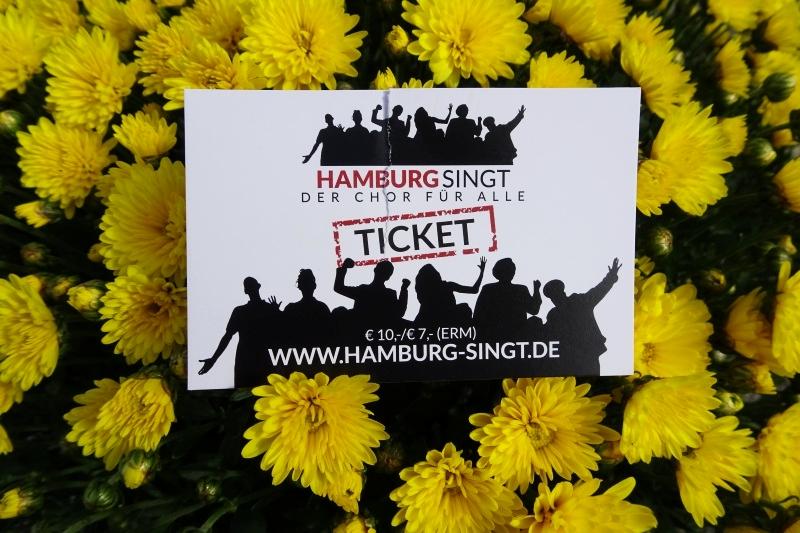 Erfahrungsbericht zum Chor Hamburg singt